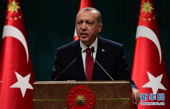 土耳其总统宣布提前大选:尽快过渡到总统制