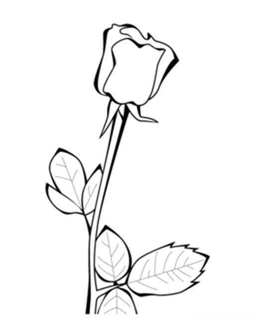 表情 表情大全花摆心表情玫瑰形容没电的搞笑图片图片 表情包之园 表情