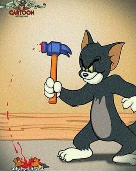 表情 汤姆猫抓老鼠 汤姆猫表情 汤姆猫简笔画 猫抓老鼠简笔画 泡泡安卓网 表情