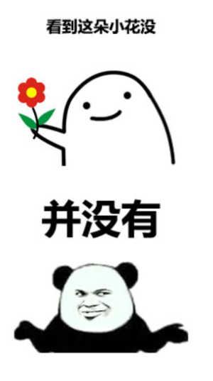 表情 看到这朵小花没并没有n
