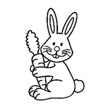 表情 兔子简笔画步骤图片大全,我的小白兔 育儿天堂 表情