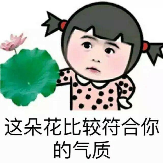 表情 白这朵花比较符合你的气质