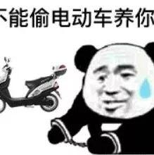 能偷电动车养竹-表情 51头像网 最新熊猫头表情包合集 表情