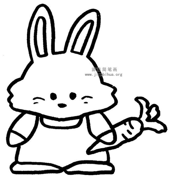 表情 兔子简笔画图片与知识 表情