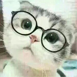 表情 推眼镜小表情表情包 推眼镜小表情微信表情包 推眼镜小表情QQ表情包 发  表情
