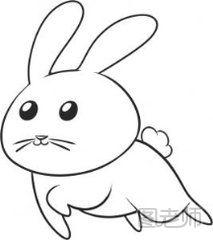 表情 图 兔子的简笔画怎么画,简笔画怎么画兔子可爱的兔子简笔画 图老师 表情