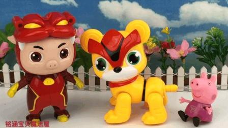 表情 猪猪侠超星萌宠阿五铁拳虎玩具 在线播放 铭涵宝贝猪猪侠玩具