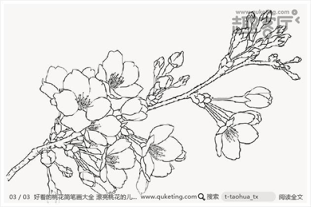 表情 好看的桃花简笔画大全漂亮桃花的儿童简笔画图片 趣客厅 表情