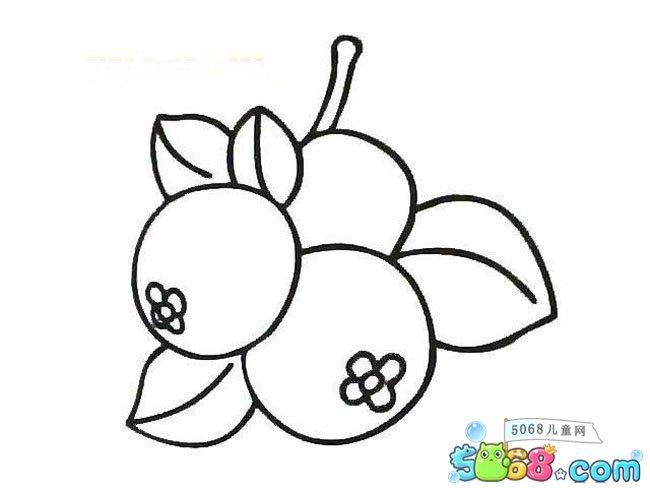 表情 带表情的水果简笔画 幼儿园秋天水果简笔画 水果加表情简笔画 儿童水果简  表情