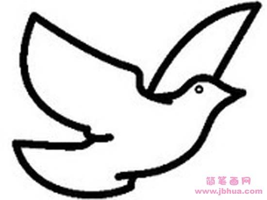 表情 和平鸽简笔画 简笔画网 表情