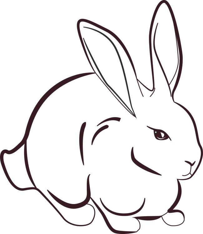 表情 兔子简笔画图片 表情