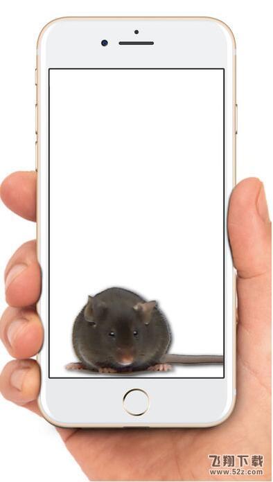 表情 老鼠在屏幕上爬动态 电脑动态壁纸狗舔屏幕 手机屏幕动态壁纸 屏幕  表情