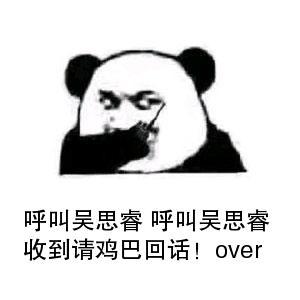 表情 教皇熊猫头对讲机呼叫表情 呼叫吴思睿呼叫吴思睿收到请鸡巴回话 over  表情