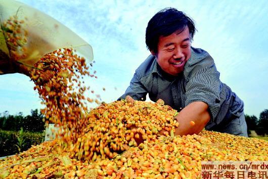 燕麦片吃多久可以减肥效果