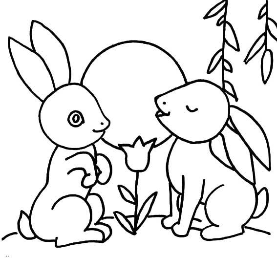 表情 两只守望月亮的玉兔简笔画 月亮兔子的画法 育才简笔画 表情