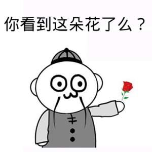 表情 你看到这朵花了么Qe牛