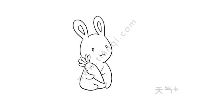 表情 简笔画小兔子的画法 简笔画小兔子的画法画法 表情