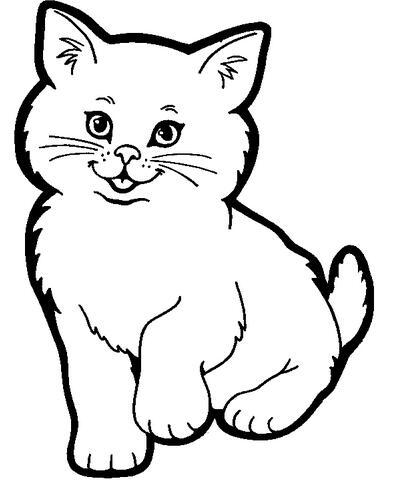 表情 卡通可爱的小花猫简笔画图片大全素描 巧巧简笔画 表情