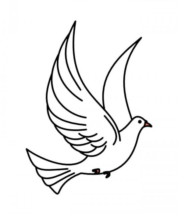 表情 橄榄枝与和平鸽的涂色简笔画 动物简笔画 育儿天堂 表情