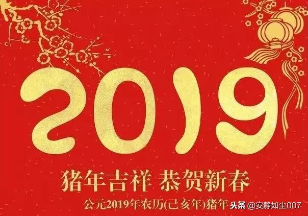 表情 2019年新年短语祝福词大全,2019猪年新年祝福语4字,2019年元旦快乐祝福  表情