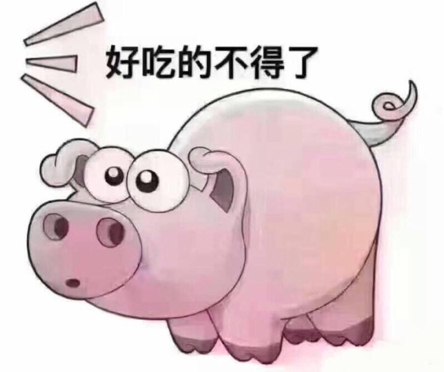 表情 摸你猪头表情包 猪头表情包图片大全 摸一下猪的小人表情包 笑摸猪头表情  表情