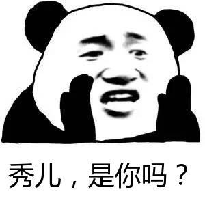 秀儿,是你吗?-表情 张学友熊猫头喊话表情包 张学友熊猫头喊话套图
