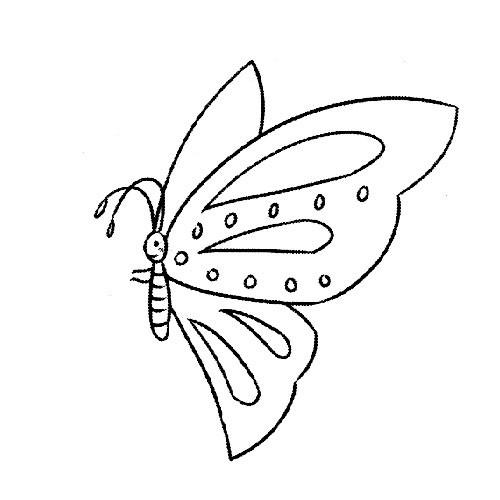 表情 茶文化图片素材简笔画 蝴蝶的简笔画图片素材 表情
