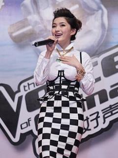中国好声音音乐节
