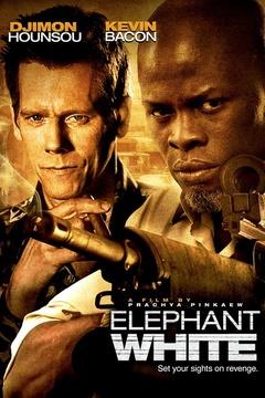 白象(2011)