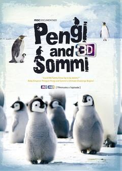 小企鹅南极历险记