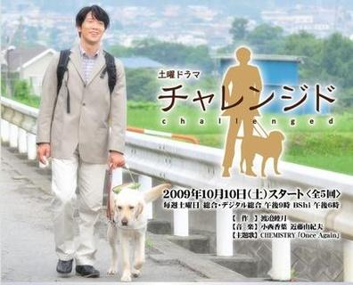 挑战(2009)