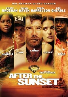 日落之后(2004)