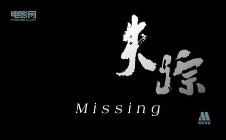失踪(2010)
