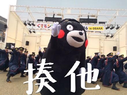 熊本熊踢人 - 表情包搜索结果 - 表情包在线制作图片