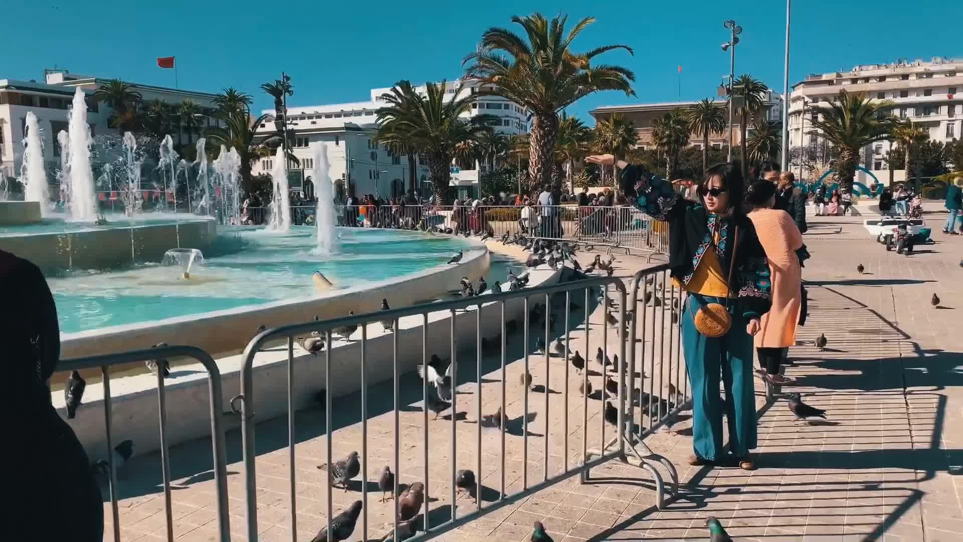 我们来到卡萨布兰卡鸽子广场 而她是追逐鸽子的女子!