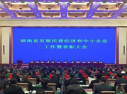 湖南省发展民营经济和中小企业工作暨表彰大会召开