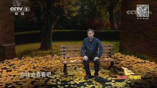 北京快3开奖结果下载版,《等着我》 20191112