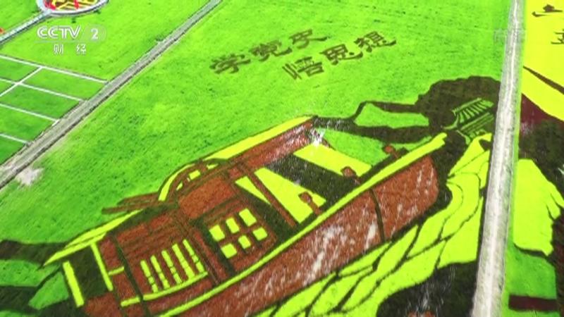 《生财有道》 20210921 咱们家乡有特产——宁夏贺兰:养眼稻田画 招财稻田蟹