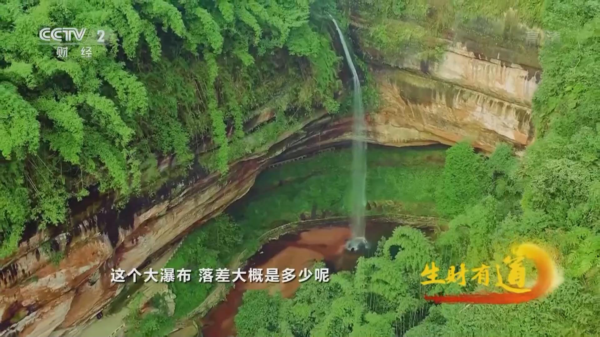《生财有道》 20211015 乡村振兴中国行——四川沐川:竹海深处 生态财富