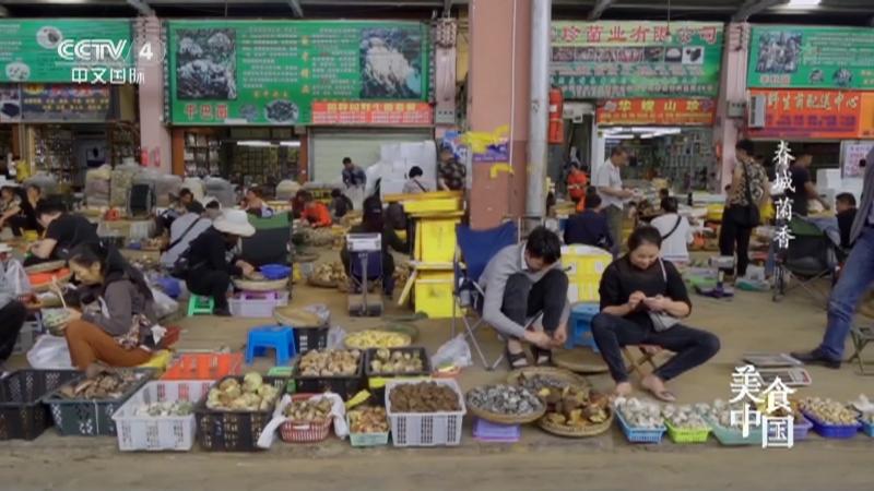 《美食中国》 20210428 春城菌香