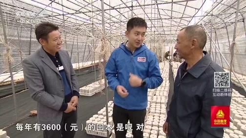 《远方的家》 长江行(71) 皖河纪行 20191115
