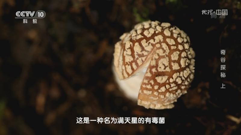 《地理·中国》 20210112 奇谷探秘 上