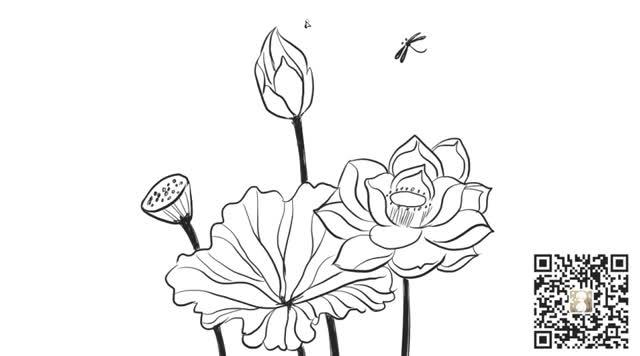 [小林画的]漂亮的含苞待放的荷花与蜻蜓儿童亲子卡通线稿简笔画图片