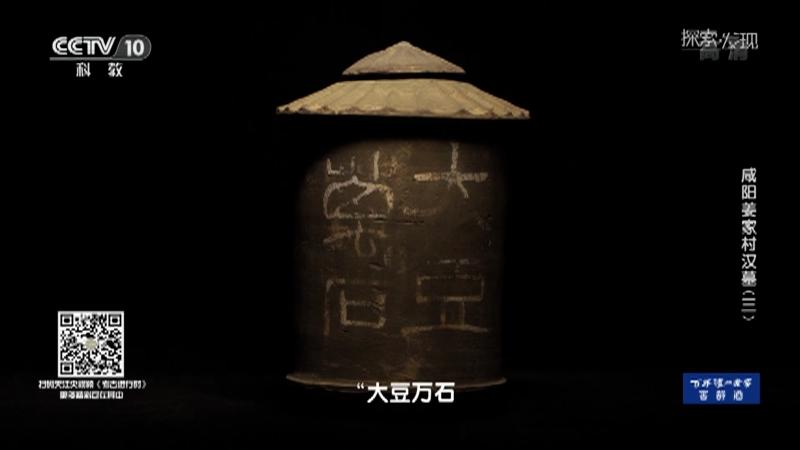《探索·发现》 20210921 咸阳姜家村汉墓(三)
