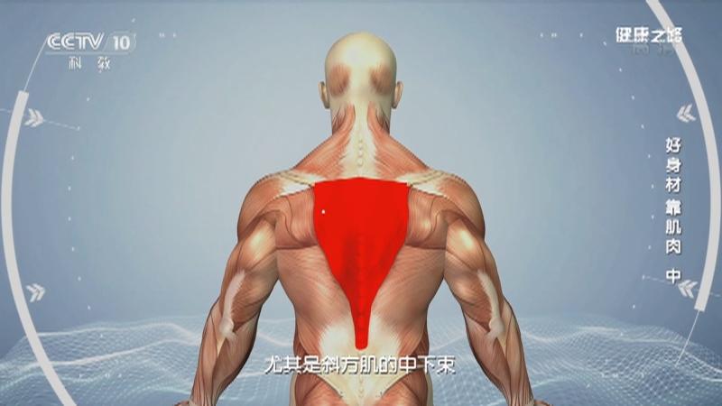 《健康之路》 20210923 好身材 靠肌肉(中)