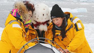 第12期:林志玲南极搭帐篷秒变女汉子