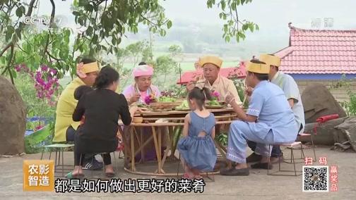 [乡土]乡土中国 品味景谷 20190731