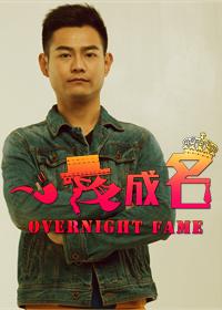 一夜成名(2014)
