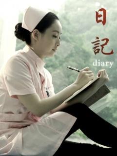 日记(2013)