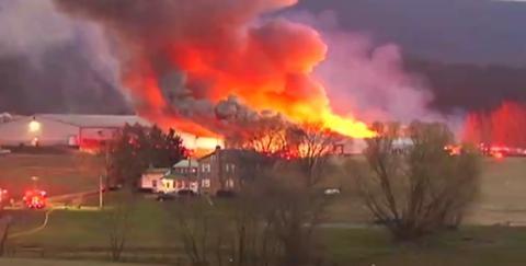 美國佛州一養雞場起火 約25萬隻雞被燒死